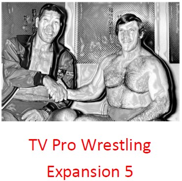 TV Pro Wrestling Expansion Set 5