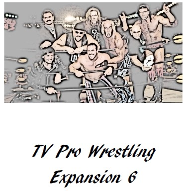 TV Pro Wrestling Expansion Set 6
