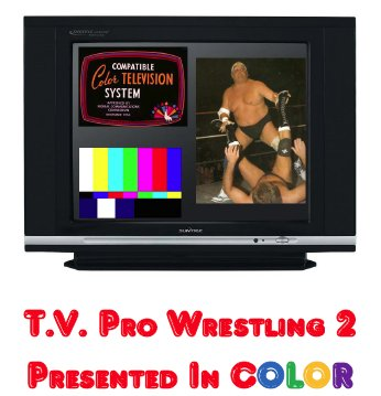 TV Pro Wrestling 2: Presented in Color Game Parts E-Book