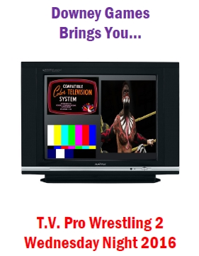 TV Pro Wrestling 2 Wednesday Night 2016