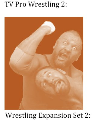 TV Pro Wrestling 2 Expansion Set 2 E-Book