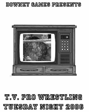 TV Pro Wrestling Tuesday Night 2006 E-Book
